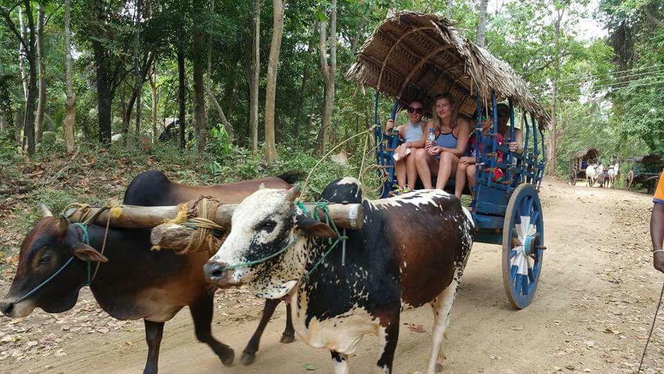 Hiriwadunna Village Trek