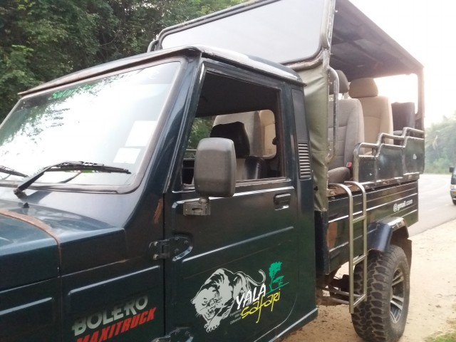 Jeep 7+1 Seater (9)